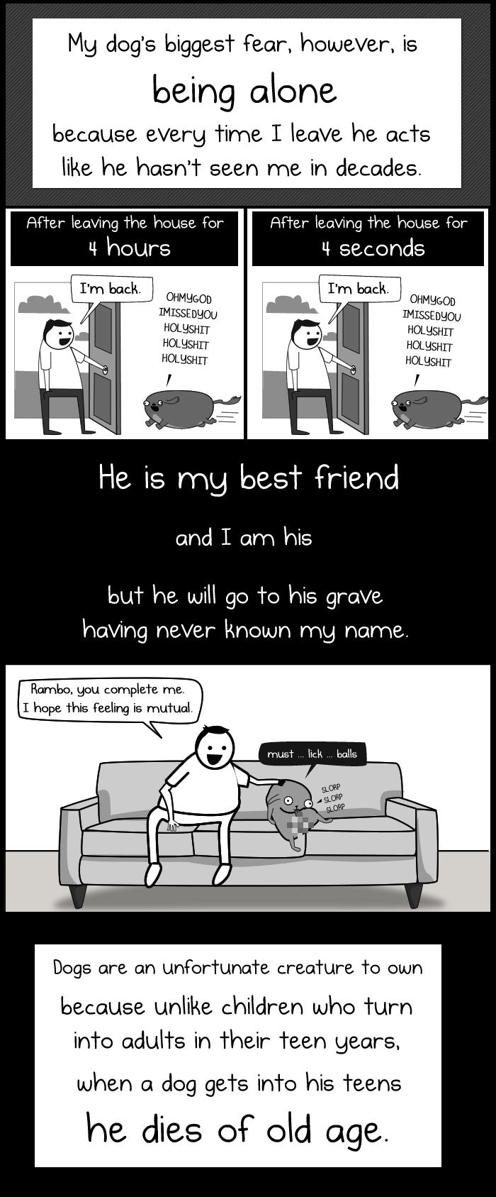 my dog the paradox pdf